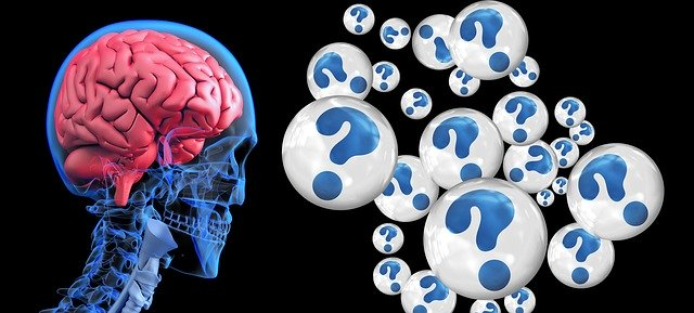 The risk of dementia is great among those with  untreated gum disease